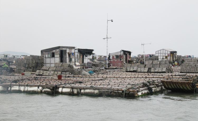 海产养殖基地无线监控方案