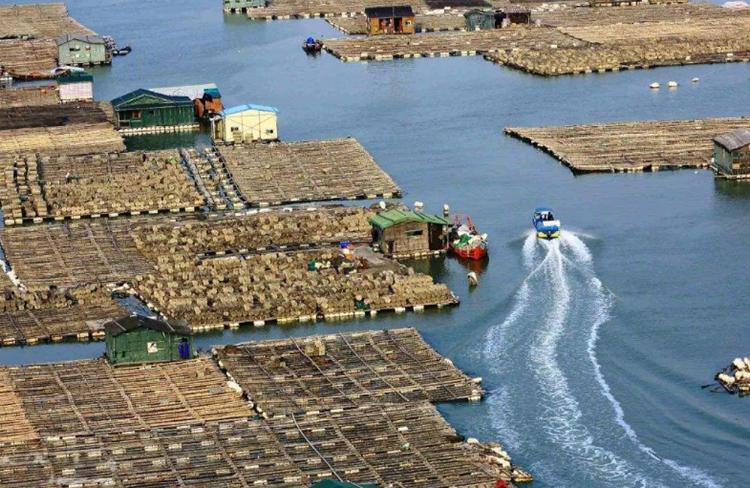 海上鲍鱼养殖平台