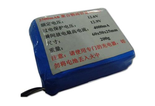 2500mah微型12v锂电池